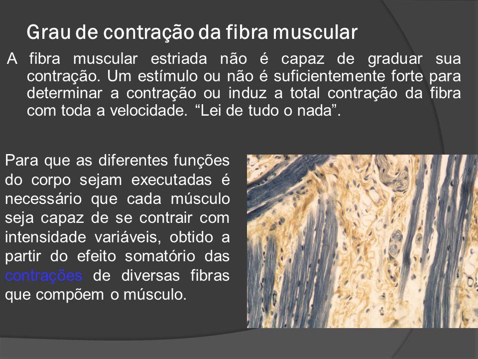 Grau de contração da fibra muscular