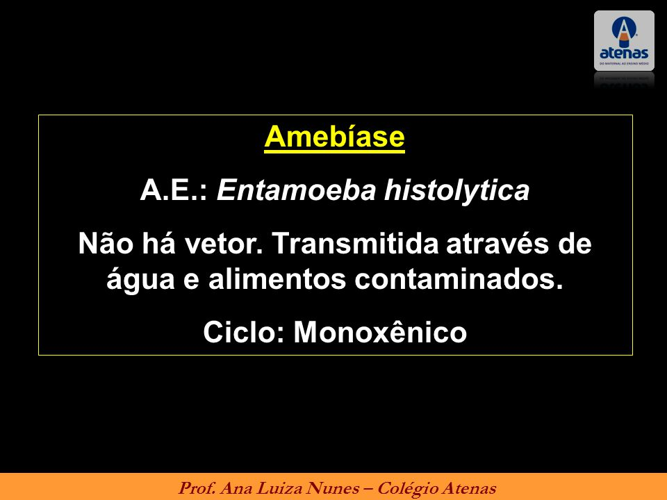 A.E.: Entamoeba histolytica