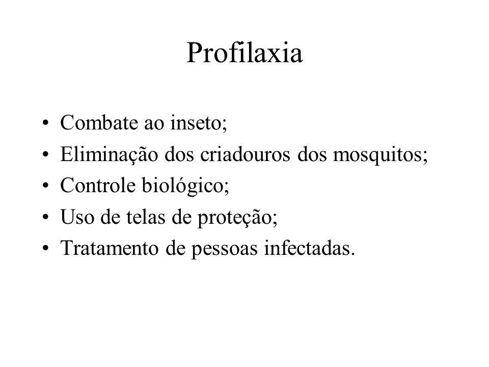 Profilaxia Combate ao inseto; Eliminação dos criadouros dos mosquitos;