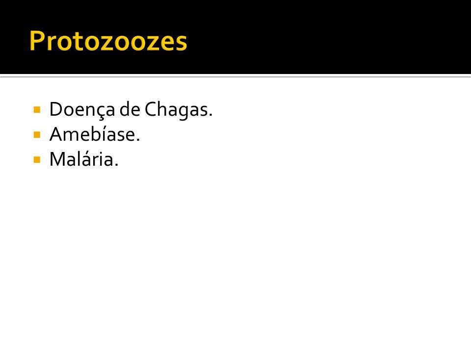 Protozoozes Doença de Chagas. Amebíase. Malária.