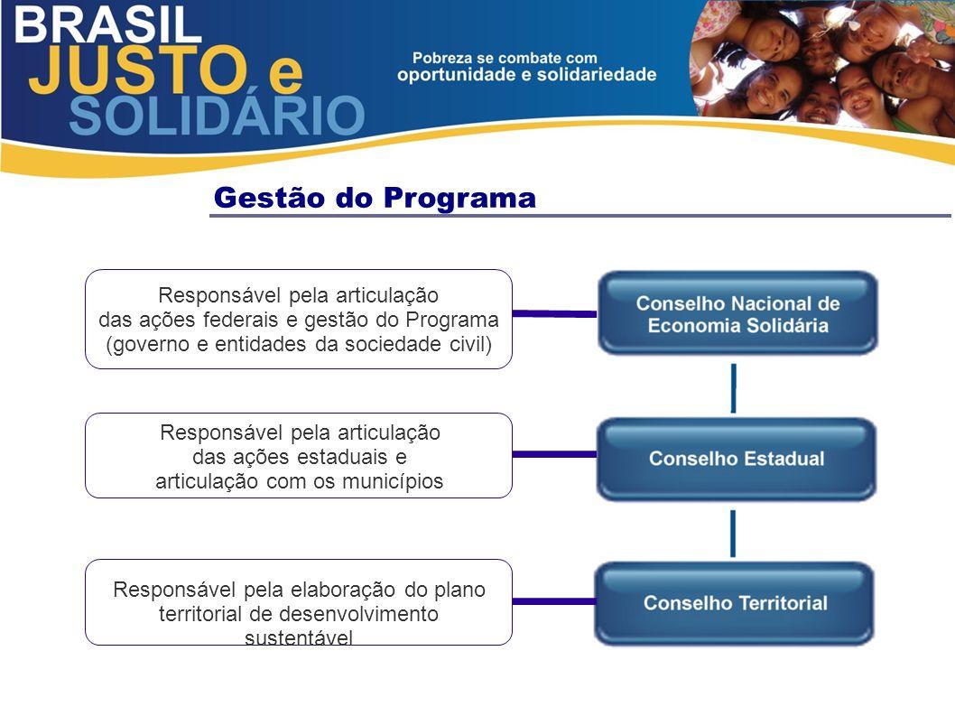 Gestão do Programa Responsável pela articulação
