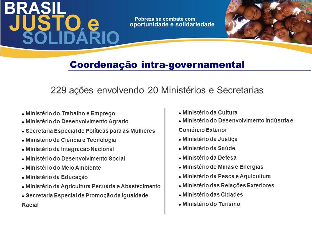 Coordenação intra-governamental