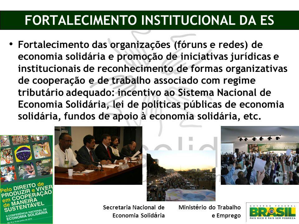 FORTALECIMENTO INSTITUCIONAL DA ES
