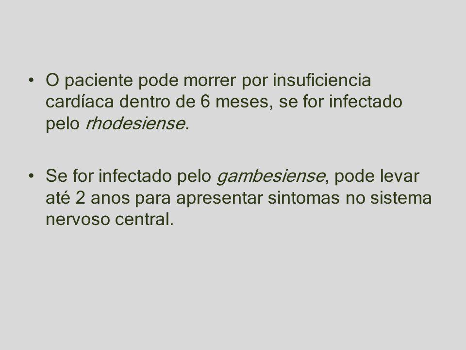 O paciente pode morrer por insuficiencia cardíaca dentro de 6 meses, se for infectado pelo rhodesiense.