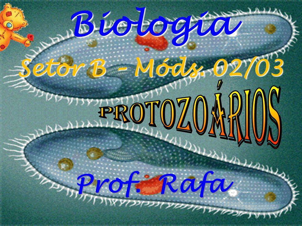 Biologia Setor B – Móds. 02/03 Protozoários Prof. Rafa