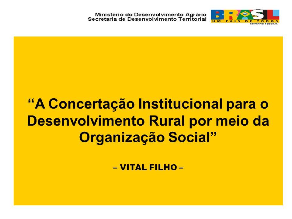 A Concertação Institucional para o Desenvolvimento Rural por meio da Organização Social – VITAL FILHO –