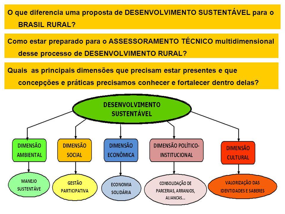 O que diferencia uma proposta de DESENVOLVIMENTO SUSTENTÁVEL para o BRASIL RURAL