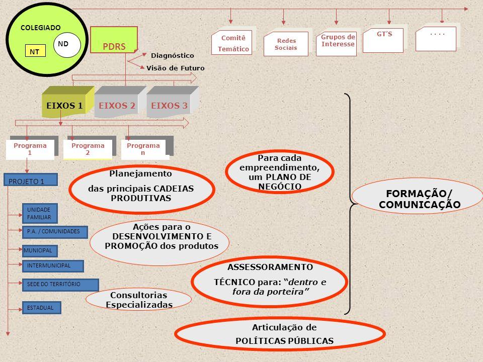 PDRS FORMAÇÃO/ COMUNICAÇÃO PROJETO 1 ND COLEGIADO NT EIXOS 1 EIXOS 2