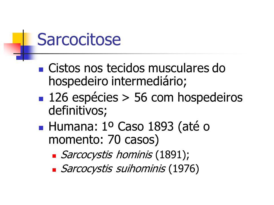 Sarcocitose Cistos nos tecidos musculares do hospedeiro intermediário;
