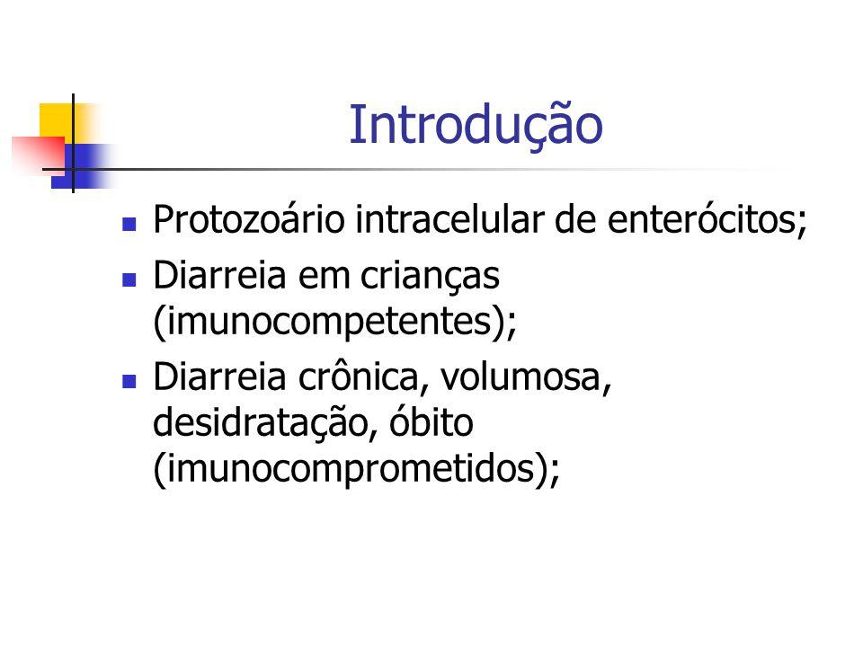 Introdução Protozoário intracelular de enterócitos;