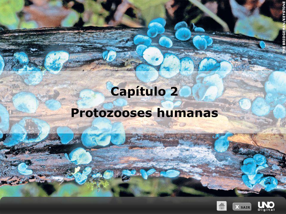 Capítulo 2 Protozooses humanas