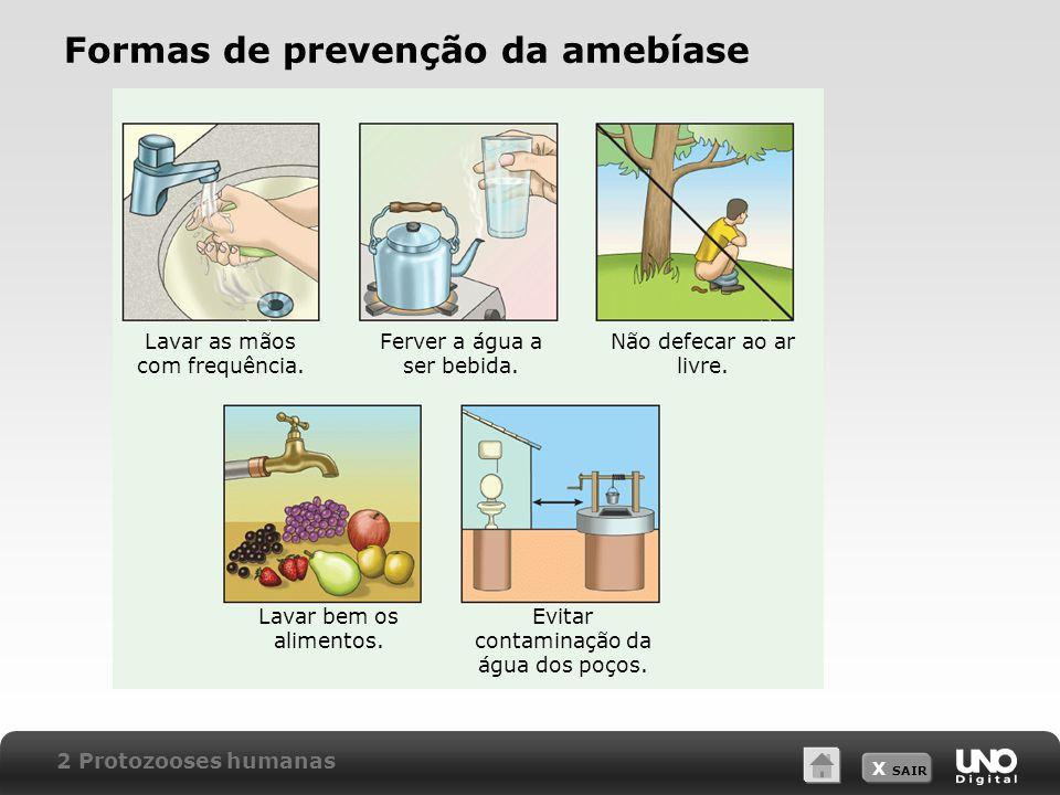 Formas de prevenção da amebíase