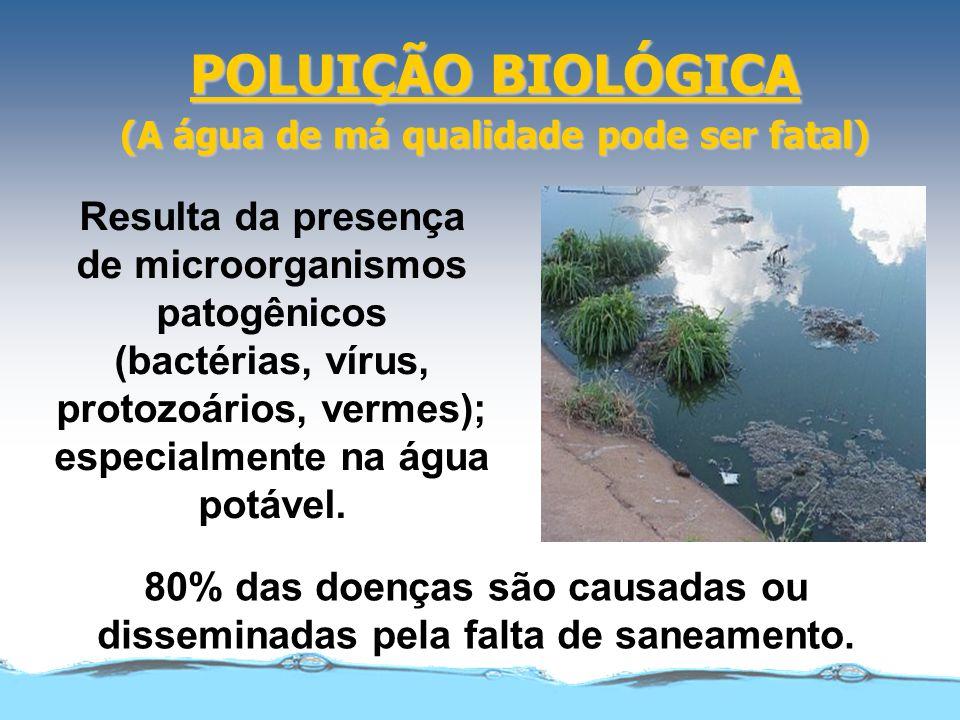 POLUIÇÃO BIOLÓGICA