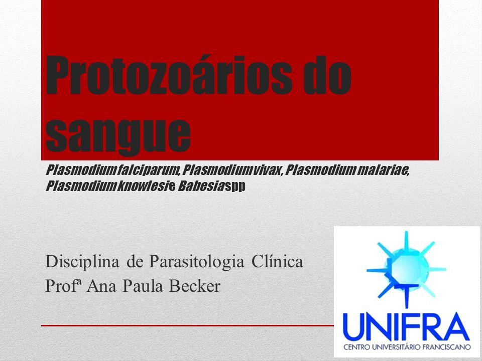 Disciplina de Parasitologia Clínica Profª Ana Paula Becker
