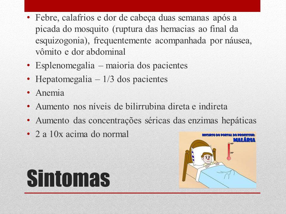 Febre, calafrios e dor de cabeça duas semanas após a picada do mosquito (ruptura das hemacias ao final da esquizogonia), frequentemente acompanhada por náusea, vômito e dor abdominal