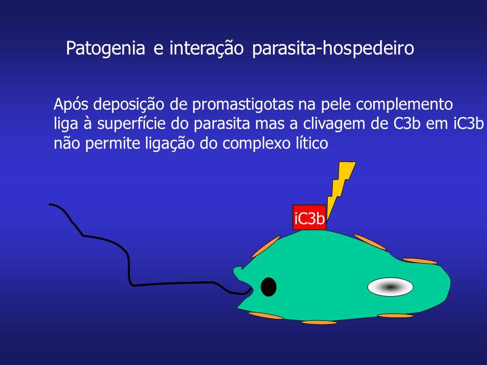 Patogenia e interação parasita-hospedeiro