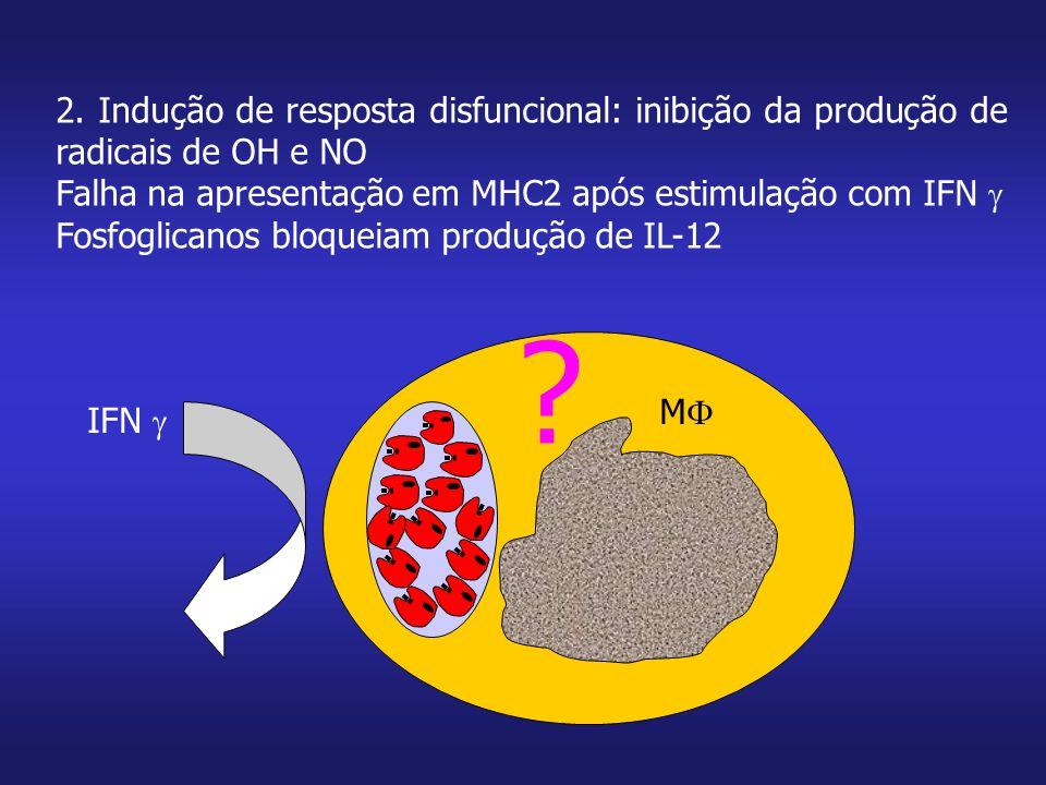 2. Indução de resposta disfuncional: inibição da produção de radicais de OH e NO