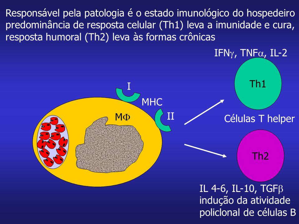 Responsável pela patologia é o estado imunológico do hospedeiro