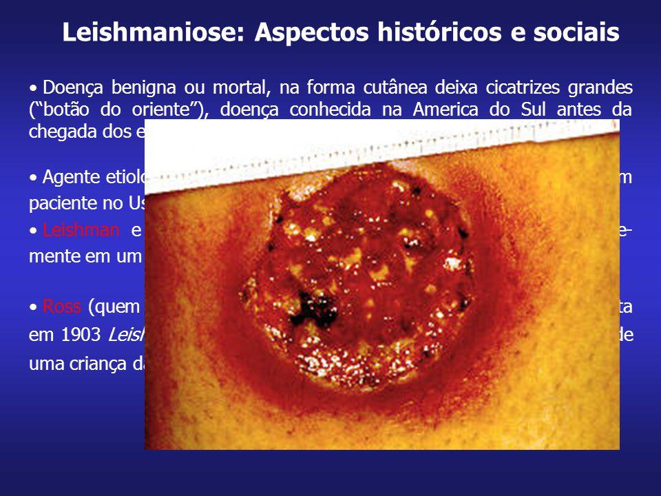 Leishmaniose: Aspectos históricos e sociais
