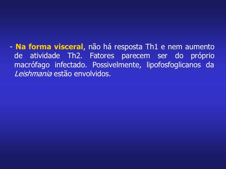 - Na forma visceral, não há resposta Th1 e nem aumento de atividade Th2.