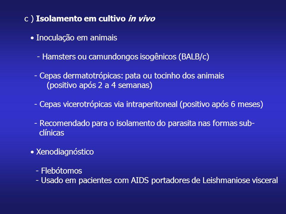 c ) Isolamento em cultivo in vivo