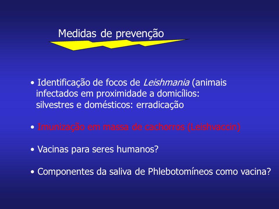 Medidas de prevenção Identificação de focos de Leishmania (animais