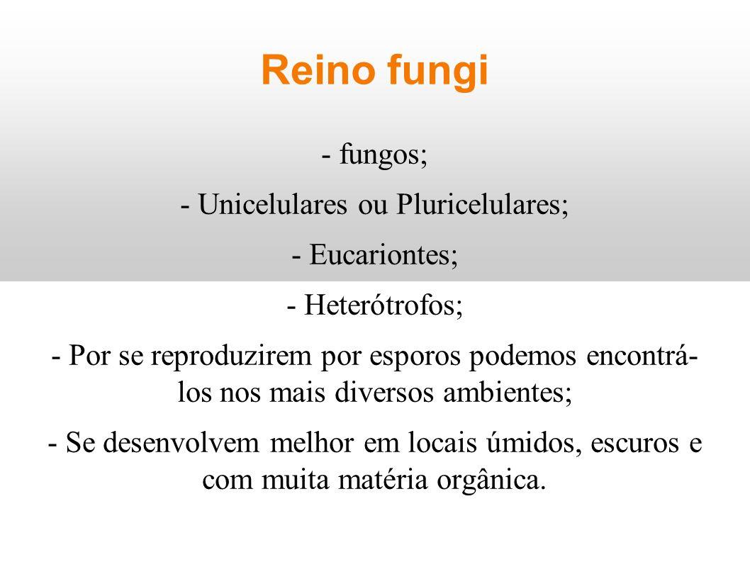 - Unicelulares ou Pluricelulares;