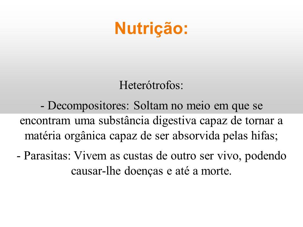 Nutrição: Heterótrofos: