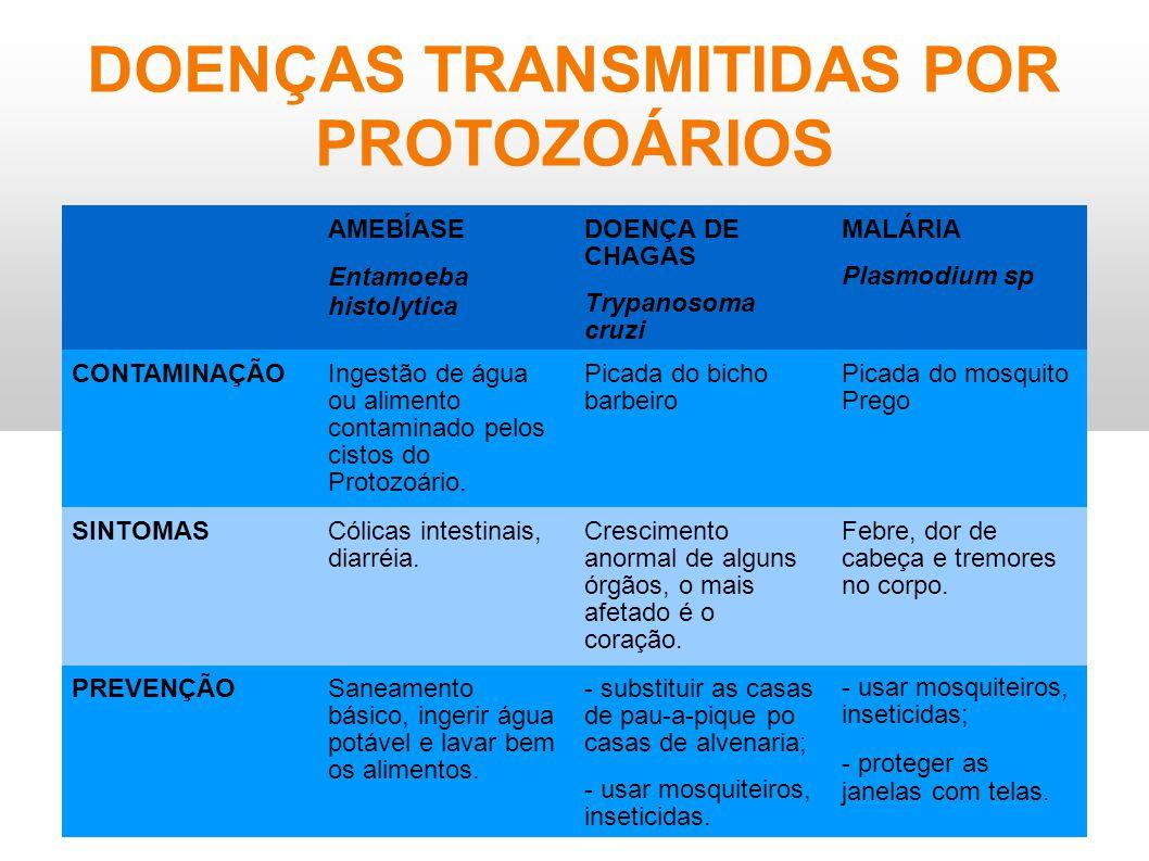DOENÇAS TRANSMITIDAS POR PROTOZOÁRIOS