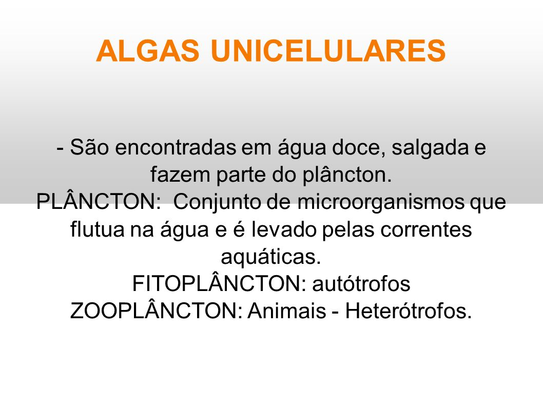 ALGAS UNICELULARES - São encontradas em água doce, salgada e fazem parte do plâncton.