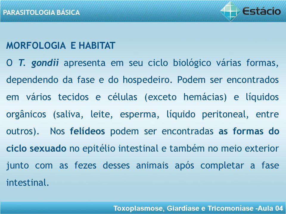 MORFOLOGIA E HABITAT