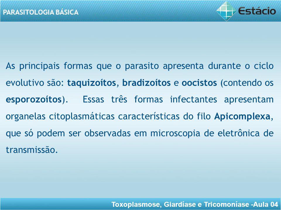 As principais formas que o parasito apresenta durante o ciclo evolutivo são: taquizoítos, bradizoítos e oocistos (contendo os esporozoítos).