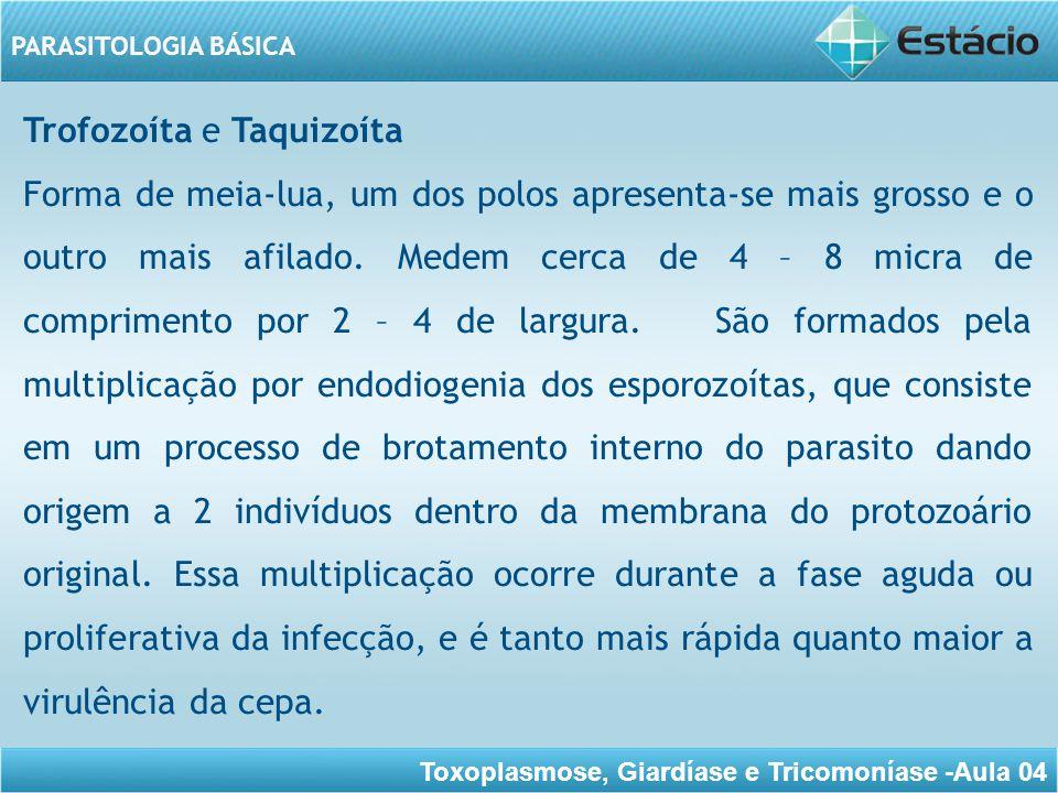 Trofozoíta e Taquizoíta