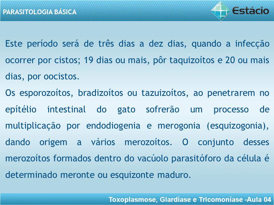 Este período será de três dias a dez dias, quando a infecção ocorrer por cistos; 19 dias ou mais, pôr taquizoítos e 20 ou mais dias, por oocistos.