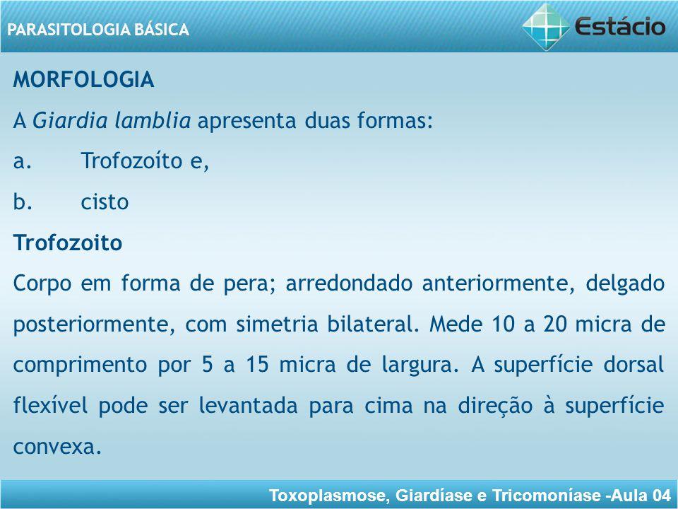 MORFOLOGIA A Giardia lamblia apresenta duas formas: a. Trofozoíto e, b. cisto. Trofozoito.