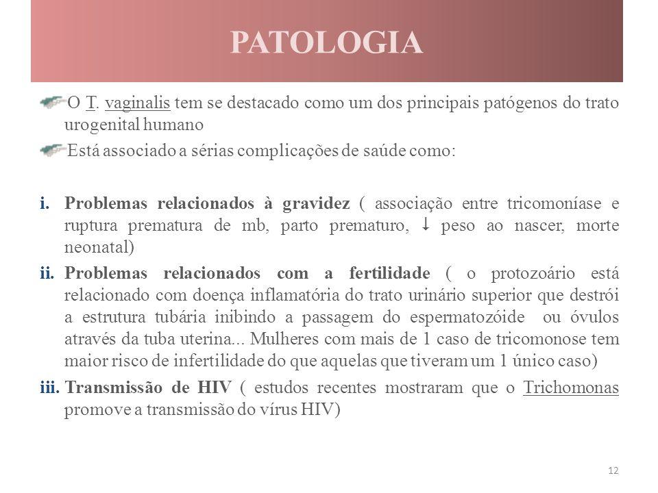 PATOLOGIA O T. vaginalis tem se destacado como um dos principais patógenos do trato urogenital humano.
