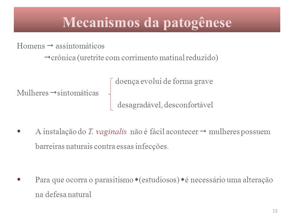 Mecanismos da patogênese