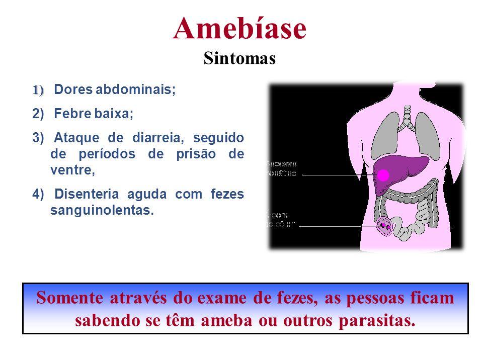 Amebíase Sintomas Dores abdominais; Febre baixa; Ataque de diarreia, seguido de períodos de prisão de ventre,