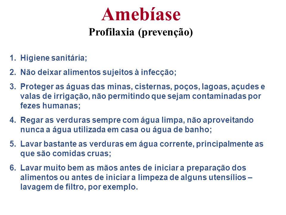 Amebíase Profilaxia (prevenção)