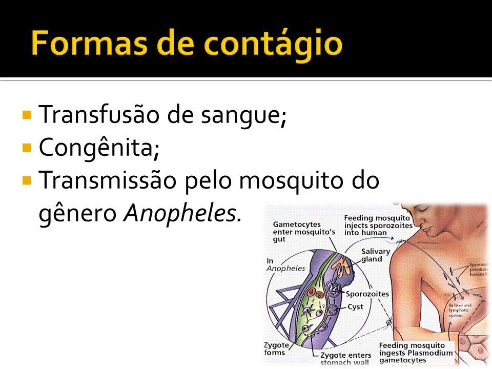 Formas de contágio Transfusão de sangue; Congênita;
