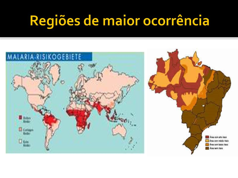 Regiões de maior ocorrência