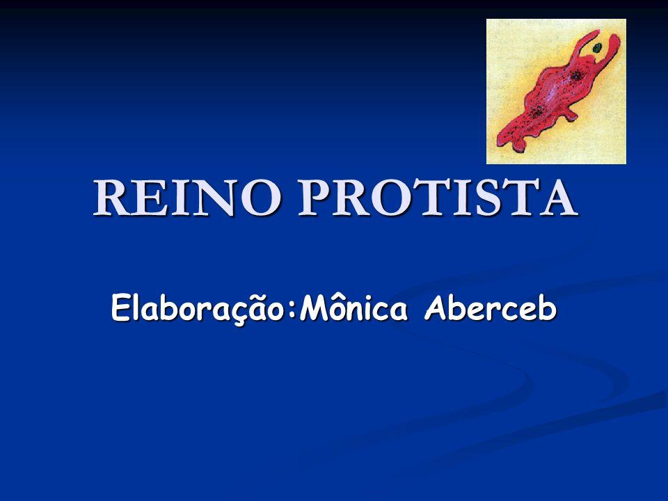 Elaboração:Mônica Aberceb