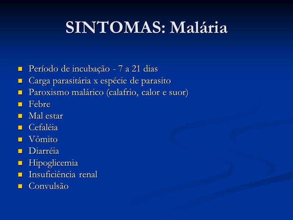 SINTOMAS: Malária Período de incubação - 7 a 21 dias