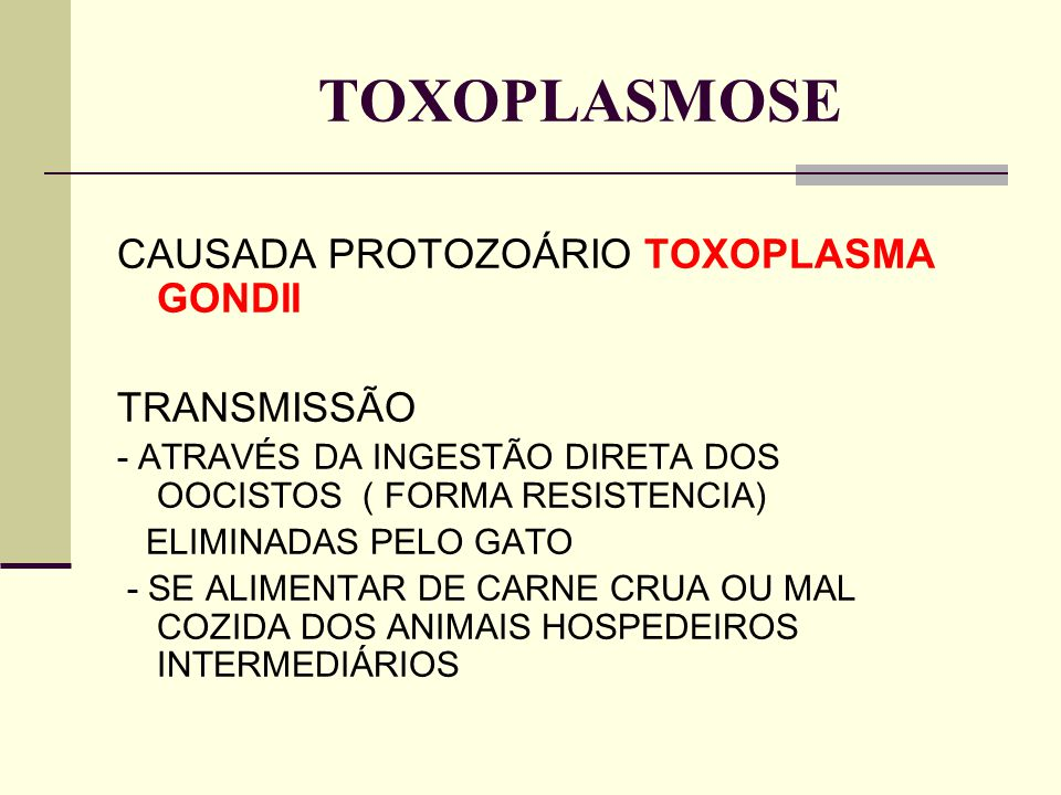 TOXOPLASMOSE CAUSADA PROTOZOÁRIO TOXOPLASMA GONDII TRANSMISSÃO