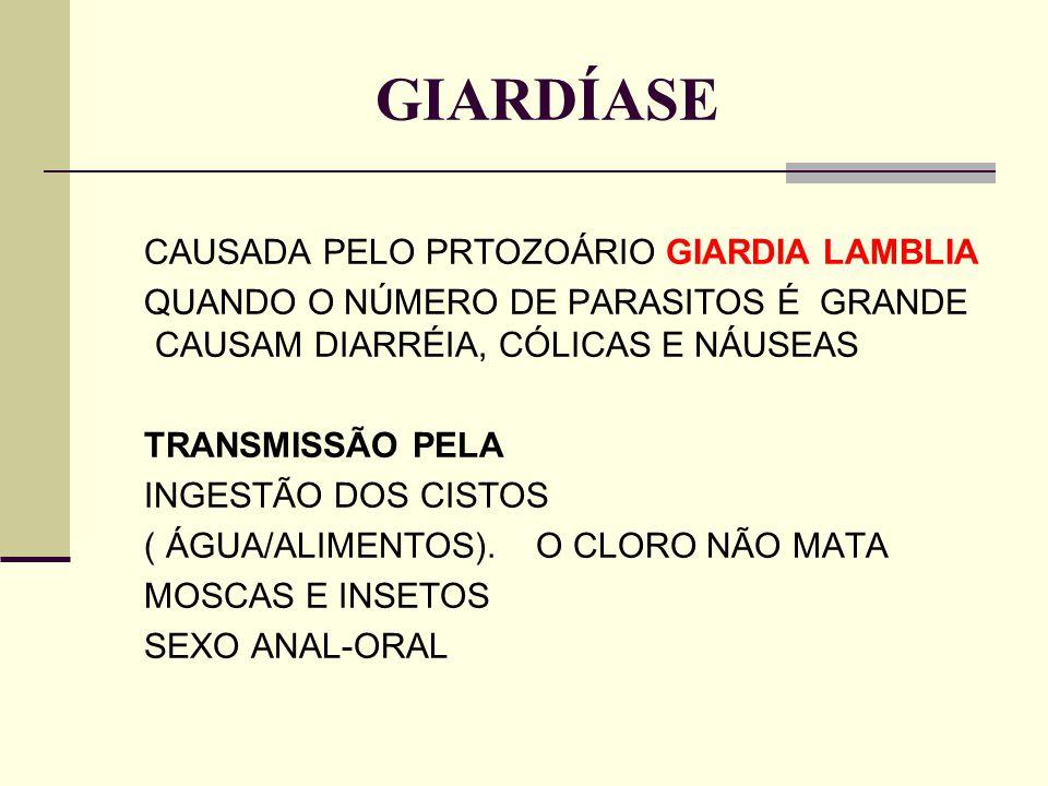 GIARDÍASE CAUSADA PELO PRTOZOÁRIO GIARDIA LAMBLIA