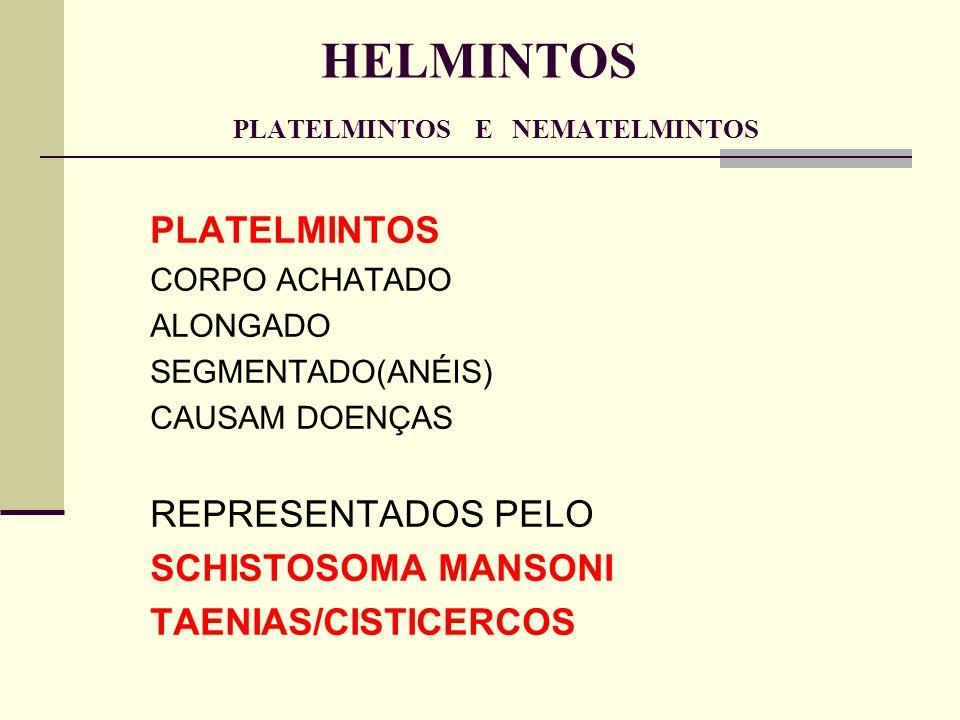 HELMINTOS PLATELMINTOS E NEMATELMINTOS