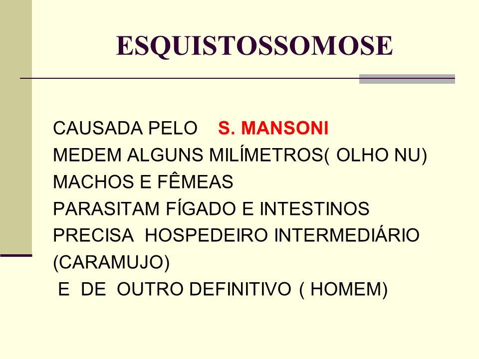 ESQUISTOSSOMOSE CAUSADA PELO S. MANSONI