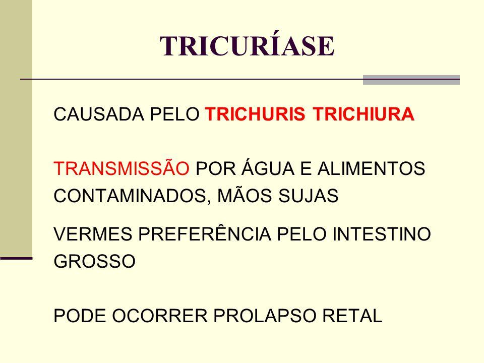 TRICURÍASE CAUSADA PELO TRICHURIS TRICHIURA