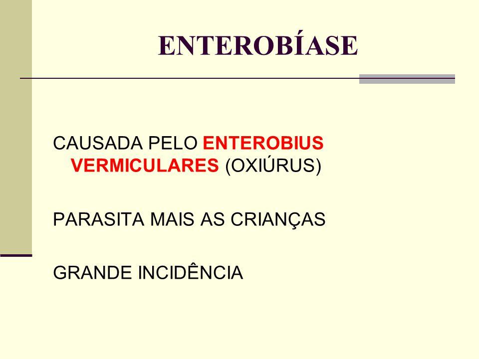 ENTEROBÍASE CAUSADA PELO ENTEROBIUS VERMICULARES (OXIÚRUS)