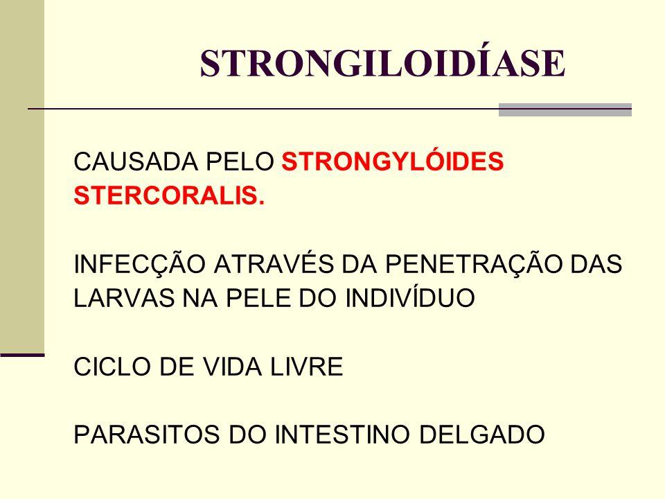 STRONGILOIDÍASE CAUSADA PELO STRONGYLÓIDES STERCORALIS.